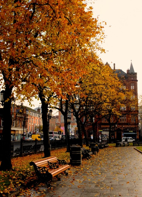 Fall in Belfast