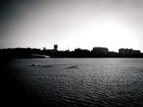 Rowers on the Charles