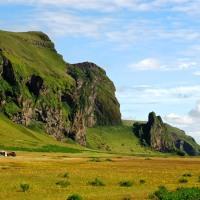 Iceland Pt. 5: Skogar