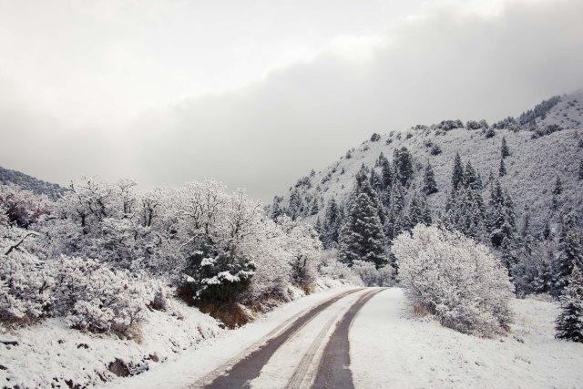 Colorado Winter Road
