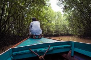 Borneo Boat Guide
