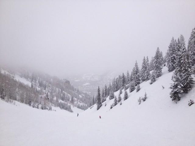 Snow, Ajax