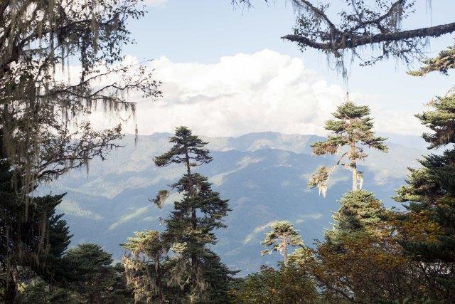 Hike views, Bumthang Bhutan