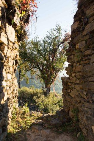 Dzong Ruins, Bhutan