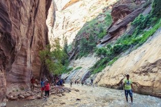 People wade through a river in Zion NP