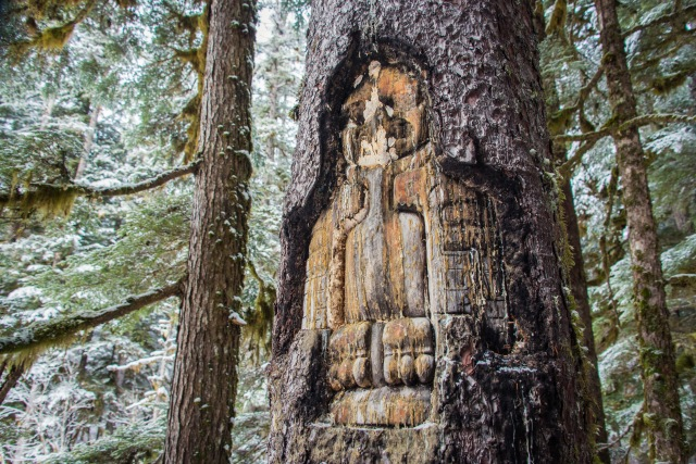 a tradition tlingit tree carving of an eagle in a tree