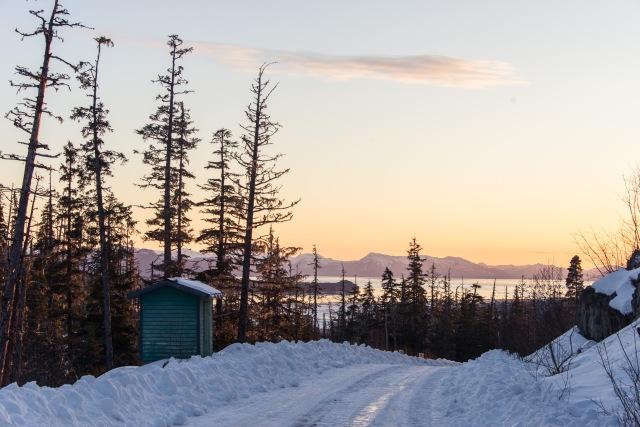 Hydro Road, Gustavus Alaska